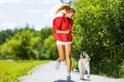 Heartworm Medicine for Dogs – A Prudent Treatment Solution